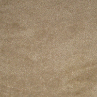 Carpet and upholstery will look like new after using the Aztec Hot Water Extractor!