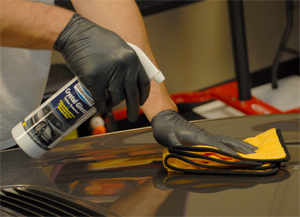 Use Diamondite Crystal Gloss Protectant to seal the paint and protect it against bugs.