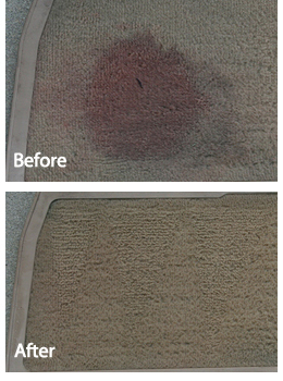 Detailer's Pro Series DP Carpet Extractor Pre-Treatment before and after.