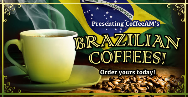 Brazilian Coffees at CoffeeAM!