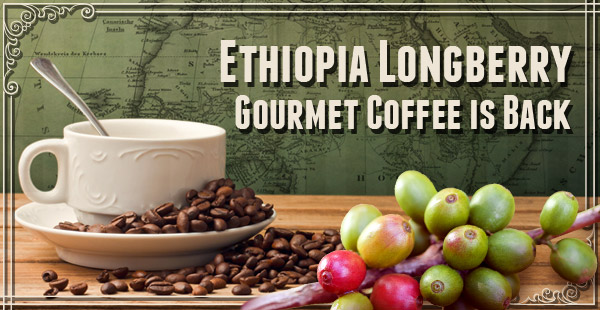Try a Free Sample of Ethiopia Longberry Coffee!