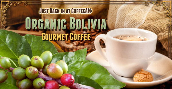 Organic Bolivia Coffee at CoffeeAM!