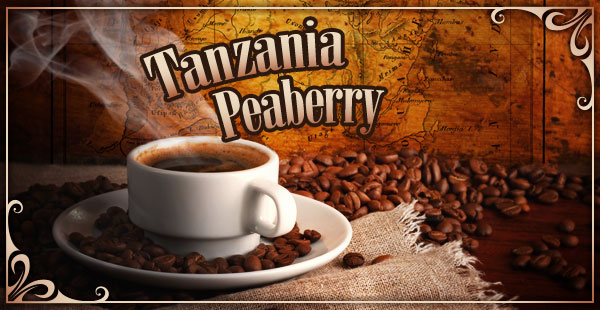 Tanzania Peaberry Gourmet Coffee at CoffeeAM!