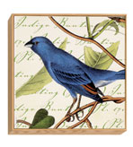 Bird Wall Decor
