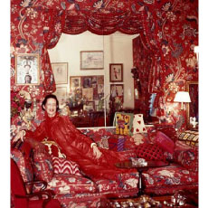 ikat pillows vreeland