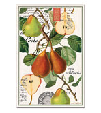 Kitchen Tea Towel Pear