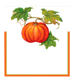Paper Placecards Autumn 10 Pc
