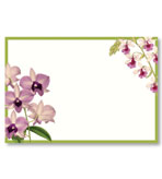 Party Invitations Orchid Show Blank Pack 8