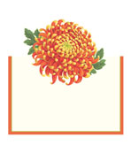 Unique Place Cards Chrysanthemum Pak 8