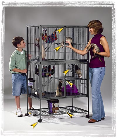 Aquariums In Houses. Ferret House Cage