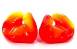 Professional Custom Molded Ear Plugs