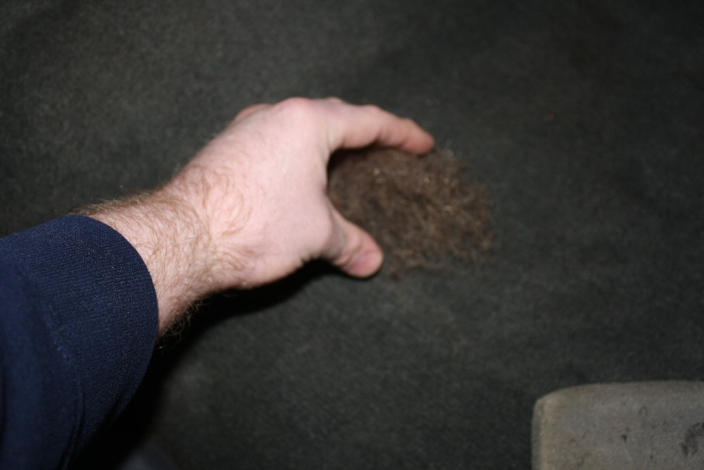 Gather Pet Hair into Clump