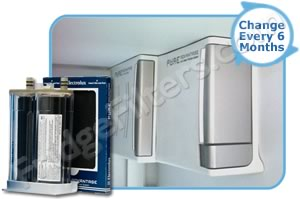 Electrolux EAFWF01 Pure Advantage Refrigerator Water/Air Filter Combo