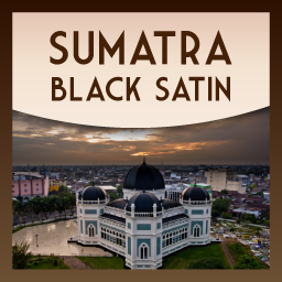 Sumatra 'Black Satin' Gourmet Coffee