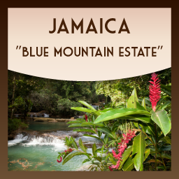 100% Pure Jamaica Blue Mountain Estate Coffee