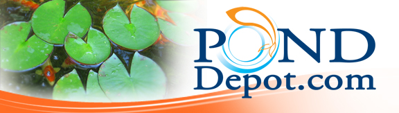 Pond Depot - Your Online Water Garden Superstore
