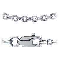 Sterling Silver Link Chain and Clasp Detail