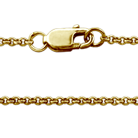 14k Gold Chain and Clasp Detail