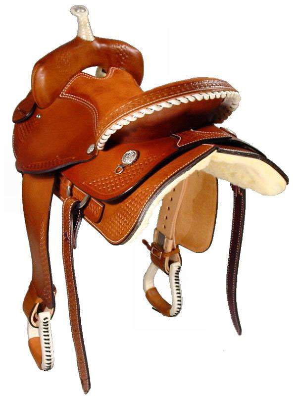 Back View, Dakota Trail Saddle 350gb