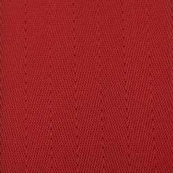 Red Seat Belt Webbing