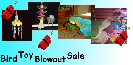 FunTime Birdy Bird Toy Blowout Sale