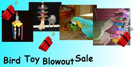 FunTime Birdy Bird Toy Blow Out Sale