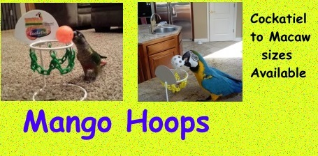 Bird Basketball Hoops on Sale at FunTime Birdy