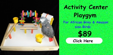 New at FunTime Birdy Activity Center Parrot Playgym