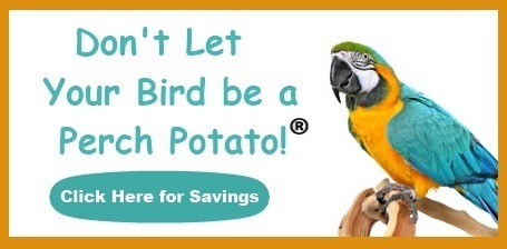 Bird Supplies on sale at FunTime Birdy