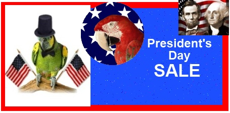 FunTime Birdy President's Day Sale