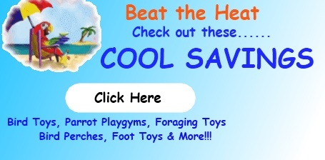 FunTime Cool Savings Sale