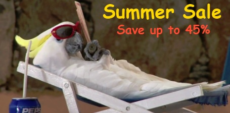FunTime Birdy Summer Sale
