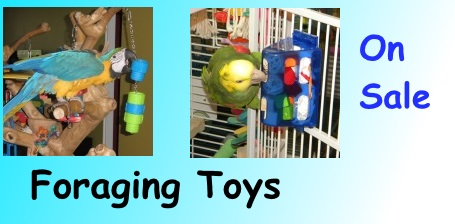 Foraging Bird Toys on Sale at FunTime Birdy
