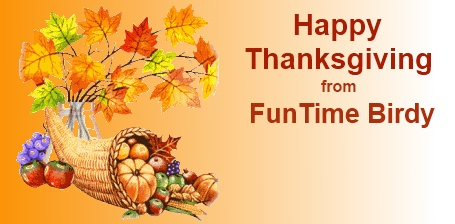 Happy Thanksgiving Sale at FunTime Birdy