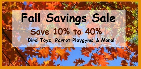 FunTime Birdy Fall Savings Sale