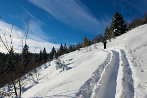 Buyer's Guide to Cross Country Ski Packages