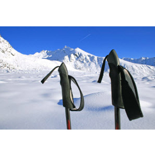 Buyer's Guide to Cross Country Ski Poles