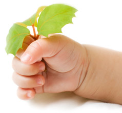 Unique, eco-friendly baby gifts.