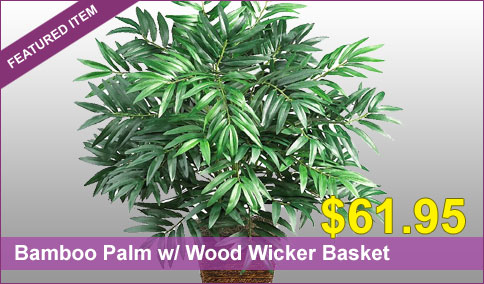 Bamboo Palm w/ Wood Wicker Basket