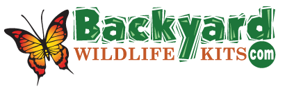 backyardwildlifekits.com