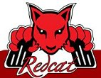 redcat racing rc cars
