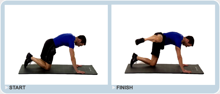 fire hydrant bodyweight exercise