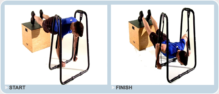 elevated ring push ups using dip station