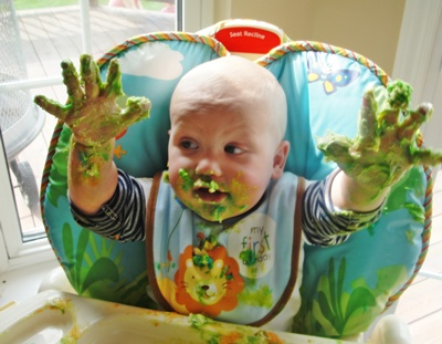 The bib protected this smash cake participant at his 1st birthday.