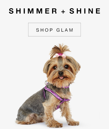 Gwen Gear San Francisco Hand Made Trendy Toy Dog Collars. Glam Dog Collars. Sparkly Pet Collars for Every Occation.