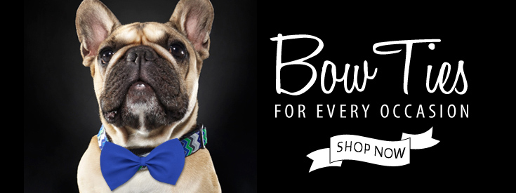Bow Ties for dogs for every occasion. Perfect for Weddings and other special occasions or just for everyday style!