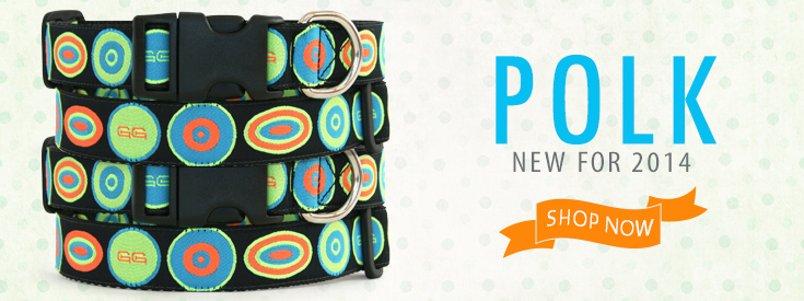Introducing Polk! Mod Circles for a bright pop of color by Gwen Gear!