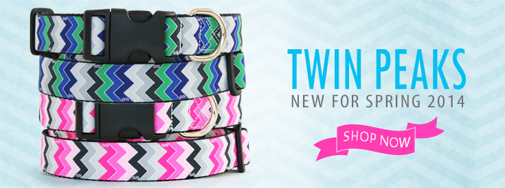 New Chevron Stripe Twin Peaks Dog Collar Pattern for Spring 2014. Twin Peaks by GwenGear San Francisco.