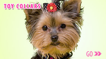Gwen Gear San Francisco Hand Made Trendy Toy Dog Collars. Includes Treat our best-selling Cupcake Dog Collar