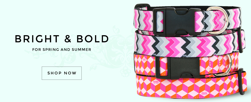Bright and Bold Collars for Spring and Summer. By GwenGear San Francisco.